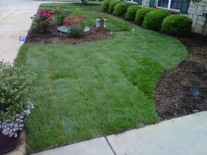 Envirascape - Lawn Maintenance